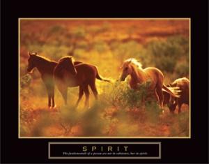 spirithorsesfl-1